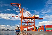 Japan-Tokyo City-Odaiba District-Aomi Wharf-Crains and containers