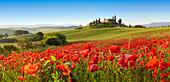 Orcia valley in spring. Orcia valley in spring
