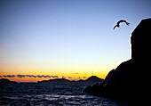 Sunset cliff jumping. Sunset cliff jumping