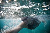Swimmer training in ocean. Maluaka Beach Park