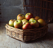 Basket of apples on floor. Coxs Apples in rustic wicker basket on a rustic wooden surface