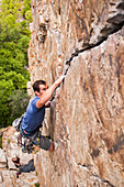 Rock climber scaling boulder crack. Goodro´s Wall 5.10c in Big Cottonwood Canyon