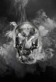 Smoke pouring from metal skull. Human Skull with Smoke, Still Life
