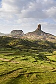 Landscape in the province Tigray, northern Ethiopia  During and after the rainy season, green fields and pasture are dominating Tigray  Corn, Sorghum, Teef local grain for injera, the typical Ethiopian bread are widespread  Africa, East Africa, Ethiopia