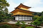 Zen monastery garden and Golden pavilion 1398, Kinkaku-ji, Kyoto, Japan