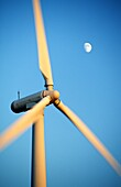 Wind turbine rotors with blue sky and moon generating electricity on wind farm at Bryn Titli near Rhayader, central Wales, UK