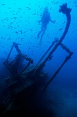 Diver exploring the Dalton Shipwreck with a school of fish swimming in the background, Marseille, France