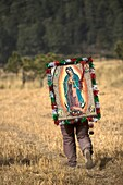 A pilgrim carrying an image of the Virgin of Guadalupe walks through a field as he travels to reach the Basilica of Guadalupe in Mexico City, December 7, 2008  Hundreds of thousands of Mexican pilgrims converged on the Basilica, bringing images to be bles