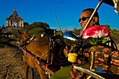 Myanmar (Burma), Mandalay State, Bagan (Pagan), Old Bagan, Thatbyinnyu Temple (Pahto Thatbyinnyu, middle 12th), tourists can discover the incredible richness of Bagan in a cart driven by horse