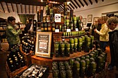 Scotland,Speyside,Dufftown,Glenfiddich Whiskey Distillery,Whiskey Retail Outlet,Tourists Buying Whiskey