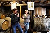 France, Midi-Pyrénées, Gers (32) Eauze, domaine de Maubet to Noulens, winecellar (Armagnac)