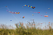 Multicoloured decorated kites flying on the breeze at a kite festival in Long Beach, Washington, USA., Colorful kites flying at beach