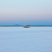 Truck driving on salt flats at dawn during Speed Week, an annual amateur auto racing event on the Bonneville Salt Flats., Bonneville Salt Flats Speed Week auto racing event
