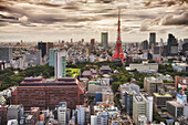 Downtown Tokyo skyline viewed from above. Densely populated and built up area of the city. Tokyo Tower landmark., Cityscape, Tokyo, Japan