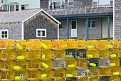 Yellow lobster buoys and lobster crates or pots, traps piled up on the dock in the harbour.  Bristol fishing port. New England., Bristol Maine, USA