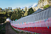 Repotacha or religious Meditation Retreat.A Buddhist place of pilgrimage. Local people come in Summer for blessings. On the road between Ganzi and Manigango. Prayer flags along the road. Mountain landscape., Sichuan Tibet