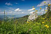 Kampenwand with lake Chiemsee in the background, Chiemgau, Bavaria, Germany