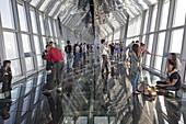 Menschen auf der Aussichtsplattform im Shanghai World Financial Center, Pudong, Shanghai, China, Asien