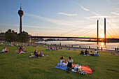 People sitting in the meadow at the Rhine river promenade at sunset, Duesseldorf, North Rhine-Westphalia, Germany, Europe