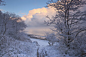 Snowy path to the shore of Baltic Sea in winter, Heiligendamm, Mecklenburg Western Pomerania, Germany, Europe