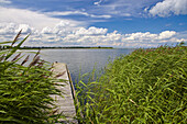 Jetty at Achterwasser under clouded sky, Island of Usedom, Mecklenburg Western Pomerania, Germany, Europe