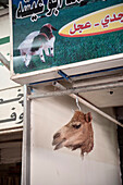 Hanging camel's head for sale on the market, Gulf of Aqaba, Red Sea, Jordan, Middle East, Asia