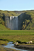 The Skogar waterfall at the coast underneath of the Porsmoerk vulkano, South Iceland, Europe