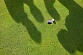 Shadows of four men playing Golf