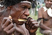 Portrait of local Papuan man, playing a traditional instrument, Baliem Valley festival, Jayawijaya region, Papua, Indonesia, Southeast Asian
