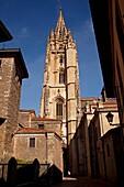 Gothic cathedral Metropolitan Church San Salvador, Oviedo, Asturias, Spain.