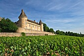 Rully castle and vineyards in Rully, Burgundy, France, Europe