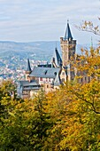 architecture , autumn , castle , city , color image , day , Europe , foliage , fortress , Germany , Harz , landmark , outdoor , picturesque , Saxony-Anhalt , scenic , tourism , Tourist attraction , travel , vertical , village , Wernigerode , World locatio