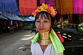 Portrait of a middle aged Longneck woman Approximately 300 Burmese refugees in Thailand are members of the indigenous group known as the Longnecks The largest of the three villages where the Longnecks live is called Nai Soi, located near Mae Hong Son City
