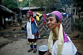 Longneck woman in their village Approximately 300 Burmese refugees in Thailand are members of the indigenous group known as the Longnecks The largest of the three villages where the Longnecks live is called Nai Soi, located near Mae Hong Son City Longneck