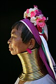 Profile of a Longneck woman Approximately 300 Burmese refugees in Thailand are members of the indigenous group known as the Longnecks The largest of the three villages where the Longnecks live is called Nai Soi, located near Mae Hong Son City Longnecks we