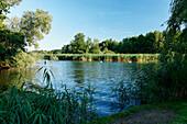 Spree river in idyllic landscape, Beeskow, Land Brandenburg, Germany, Europe