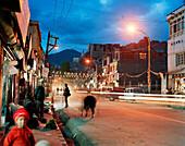 Farmer selling vegetables on the Main Bazar at main street below Royal Palace, Leh, Ladakh, Jammu and Kashmir, India