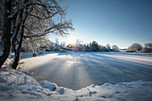 Winter scenery in morning light, Degerndorf, Muensing, Bavaria, Germany