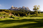 Golf course, Kastelruth Golf club, with Seiser Alm in the background, Dolomites, South Tyrol, Italy