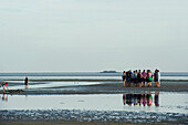 A group of people mudflat hiking, Wattenmeer National Park, near Wyk, Foehr, North Frisian Islands, Schleswig-Holstein, Germany, Europe