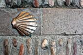 The Scallop Shell, emblem of St James, Estella-Lizarra, Navarra, Spain