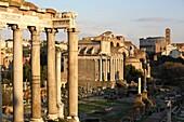 Caesar forum, aka Roman Forum, Rome, Italy