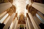 famous church organ built by Friedrich Stellwagen inside the Marienkirche or St  Mary´s church, Hanseatic City of Stralsund, Mecklenburg-Vorpommern, Germany