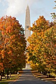 The Bennington Battle Monument and fall foliage along Monument Avenue in Bennington, Vermont, USA