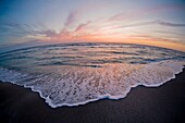 Sunset over the Gulf of Mexico from Venice Beach Florida