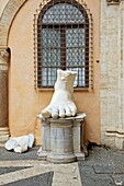 Parts of the Colossal statue of Constantine in the Capitoline Museum, Rome, Italy  Roman antiquities displayed in courtyard