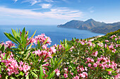 Cape Chones, Kos Island, Dodecanese, Greece