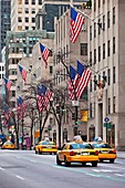 Yellow Taxis race down 5th Avenue in Manhattan, New York City, USA