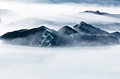 Mist forming among Icebergs at glacial lake in Mount Cook national park, New Zealand