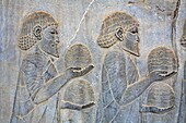 Bas reliefs showing envoys of the subject nations of Persia bringing gifts, Persepolis, Iran